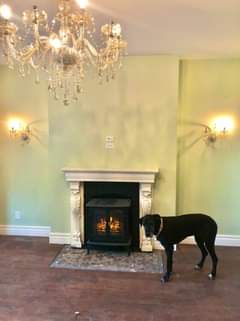 Nobody knew these fireplaces or beautiful tile surrounds existed (except maybe M